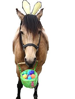 Carnival Egg-Stravaganza
